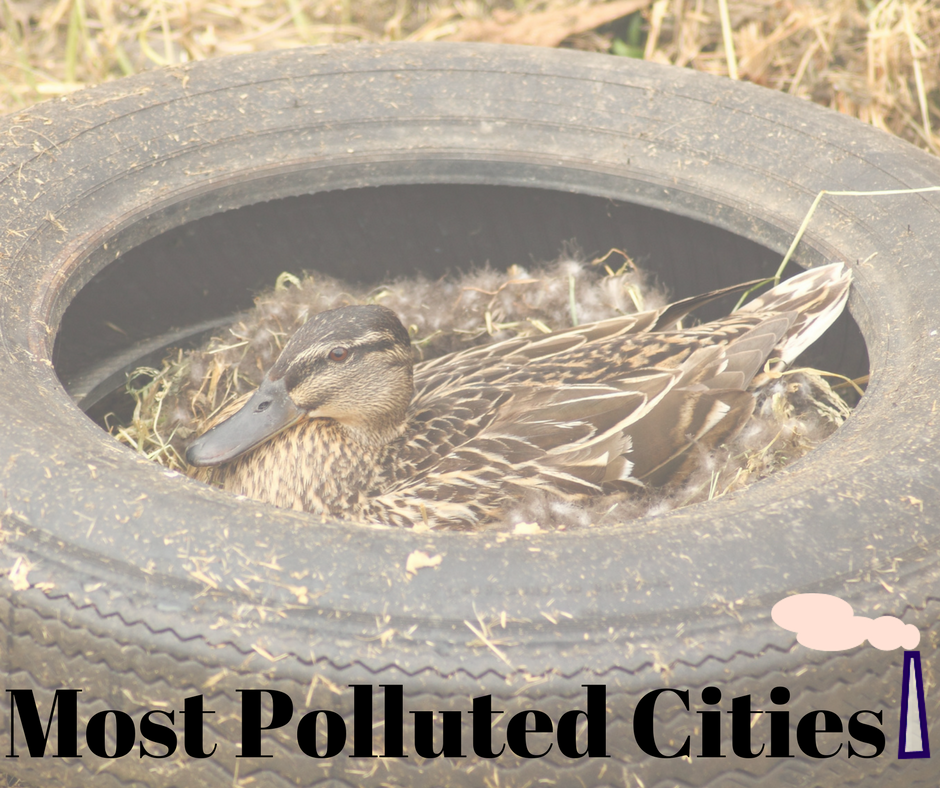Air Quality Amp The Most Polluted Cities Baxter Group Inc